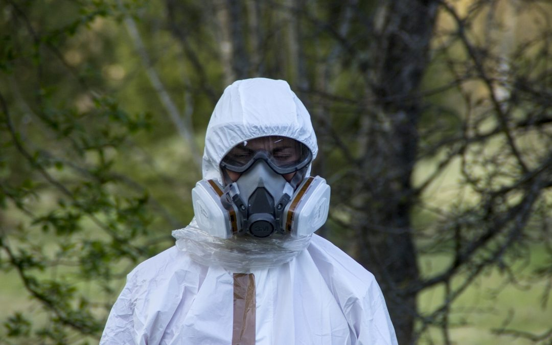 3 Important Things to Consider Before You Remove Asbestos Yourself